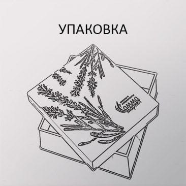 разработка упаковки 008